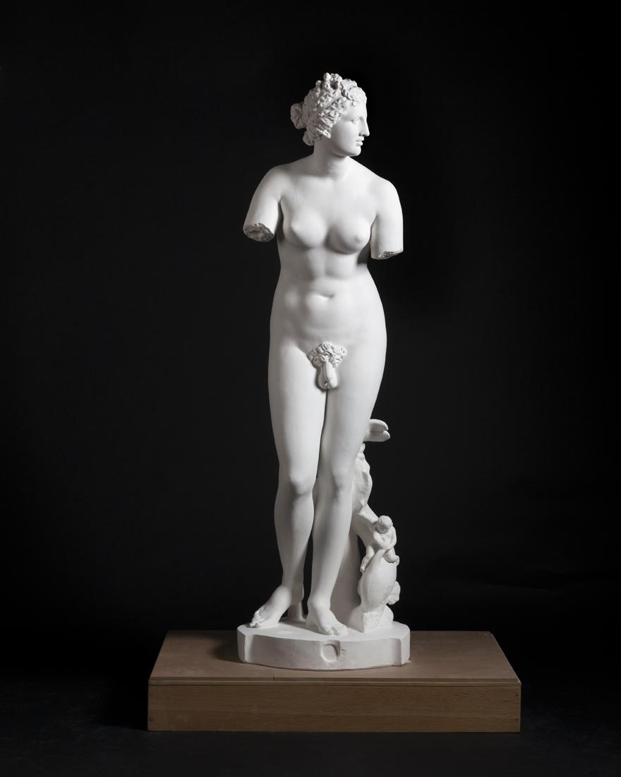women-hermafrodita